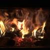 クヌギ vs 樫 薪の熱量比較②