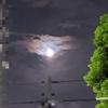 夜散歩 ~日盤吉方と更待月の月光浴~