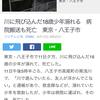 川に飛び込んだ18歳少年溺れて死亡。東京八王子市南浅川