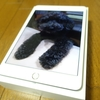 新型iPad mini(第5世代)レビュー!片手で持てるサイズ感と使い勝手は最高だ