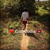 #アンコールワット個人ツアー(285)#カンボジアのおすすめ観光スポット