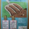 令和元年度 藤岡歴史館夏季企画展『埴輪の匠、藤岡にあらわる  ー埴輪づくりの窯をさぐるー』