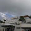 SFC修行。沖縄滞在時間8時間の観光コース