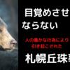 日本史上四番目の熊害事件【札幌丘珠事件】人の愚かな欲望が生んだ悲劇