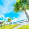 私は正直、沖縄に興味がないのに移住した。