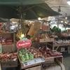 道の駅好きにおすすめ!採れたて地元野菜とスムージーがおいしい宜野湾ハッピーモア市場