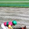 6月13日の競馬予想。重馬場は危険な香り。