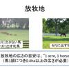 育成馬ブログ 生産編⑨(その2)