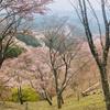 奈良の吉野へ