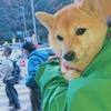 ワクワク☆大山登山 with 豆柴そら<後編>