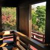 秋の母娘旅 その3  松江城