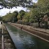 琵琶湖疎水ハイク・・・大津から京都へ