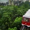 6 香港の盛衰 ピークトラム