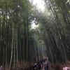 をかぴ旅行記2