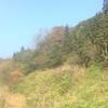 【里山協力隊】ナツハゼ摘みと化石クリーニング@越の里山倶楽部