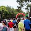 第34回シーガイアジョギングユニファイド大会 レポート