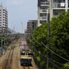 武蔵野を行く国鉄特急色