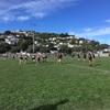 Rugby semi final!フラットメイトに誘われてラグビー観戦!