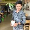 アボカド( Avocado )の苗木、店のお客さんに差し上げています。