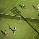 茶トラ猫テニス