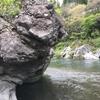 恐怖核心…虫核心…ジムとは一味違う外岩に行ってみました