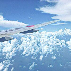飛行機が遅延した時に補償がある最安クレジットカードは、MUFGカード ゴールド!航空券を買うだけで渡航便遅延保険に加入できます。