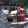 増上寺 薪能 お天気が味方した、ありがとう
