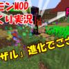 ポケモンMODパート4(その1):「ヒコザル進化でござる!?」