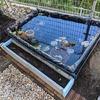 庭に池をつくる(②池周りの色々他)