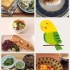 【32w2d】17/05/24の食事