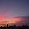 🌄昨日の朝焼け&近所で撮影しました😄