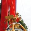 天を貫く深紅の旗の群れ【お熊甲祭】