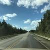 カナダ〜アラスカ旅157日目 デナリ国立公園へ