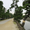 【日光街道歩き旅 1日目】日本橋から北へ!