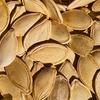 なぜナッツにはあれほどの栄養素が含まれているのか?あまり知られていない意外な理由