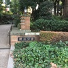 紅葉、イロトリドリ横浜公園