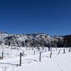 北八ヶ岳ロープウェイに乗ってピラタス蓼科でスキーを楽しんできた!