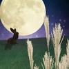 愛しい人に想いを伝えるときは月を見上げよう