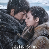 中国映画レビュー「南極の恋 南极之恋Till the End of the World」