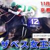 エリザベス女王杯(2019)京都競馬場 芝2200M 予想 穴党