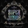 Super Junior (슈퍼주니어)  -『Mystery』【日本語訳/かなるび/パート分け】