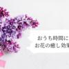おうち時間におすすめ♪お花の癒し効果について。