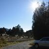 初冬の三辻山遊山 冬の日