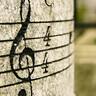 作曲家が好き。