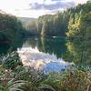 片地の池(富山県上市)