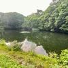 狐池(新潟県妙高)