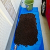 きゅうりプランターの土の再生