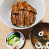市販の鰻の蒲焼きを関西風に仕上げていく