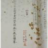 日本国憲法に天皇制が残された敗戦後的な事情