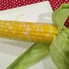 ここケンタッキー州は一気に秋の気配が… 夏野菜の旬も過ぎていきます… トウモロコシは皮付きでチン…